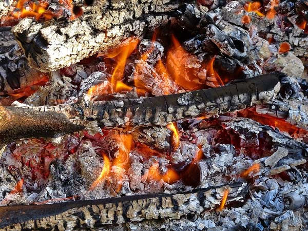 aleix font foc